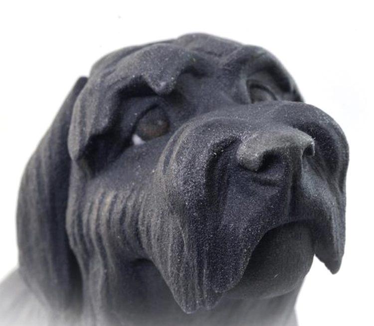 perro-3d