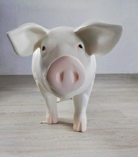cerdo-corcho